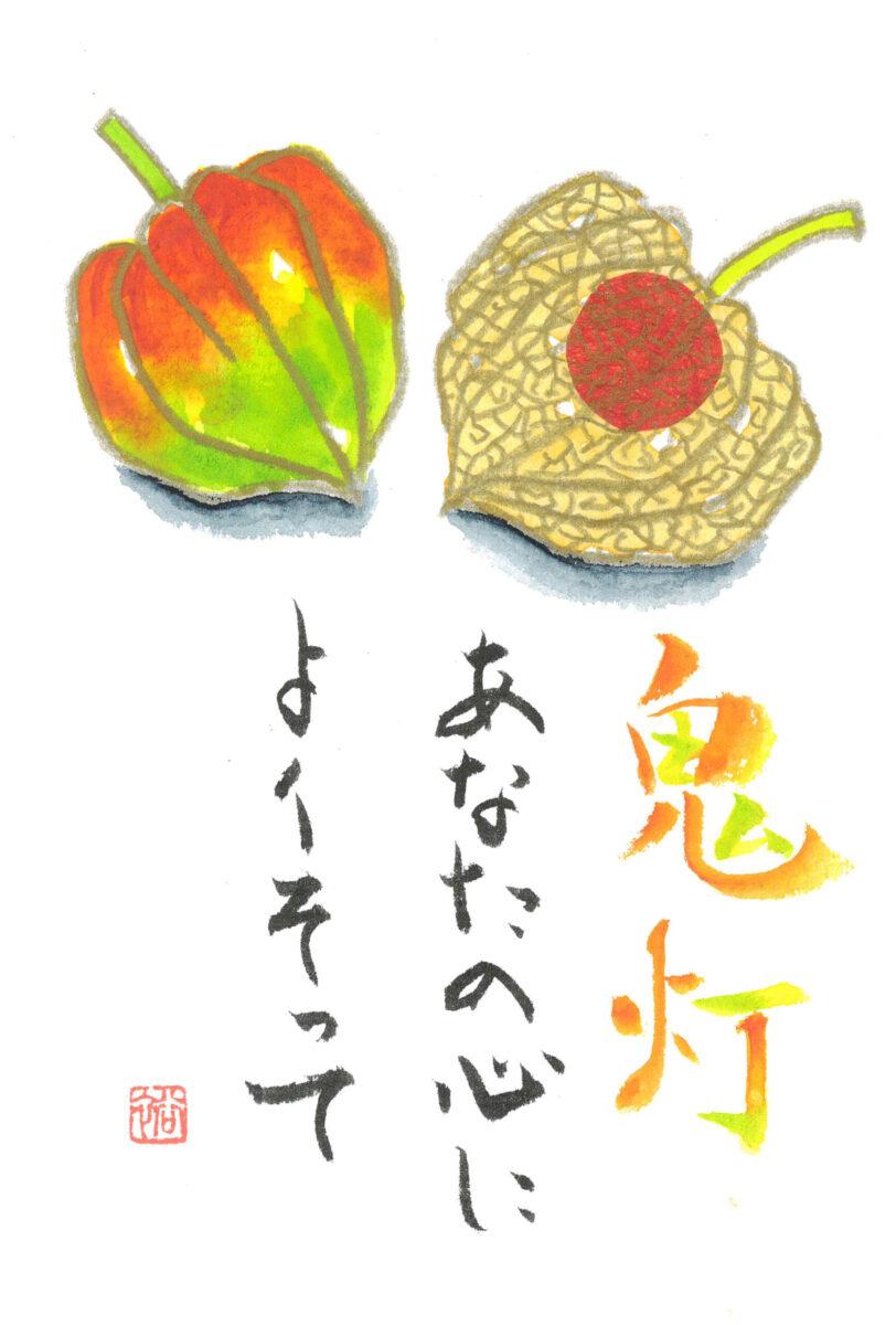 上野先生作品_絵手紙_ホオヅキ